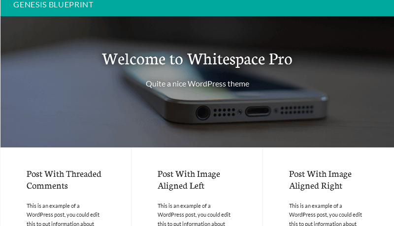 whitespace_pro_post_info_removed